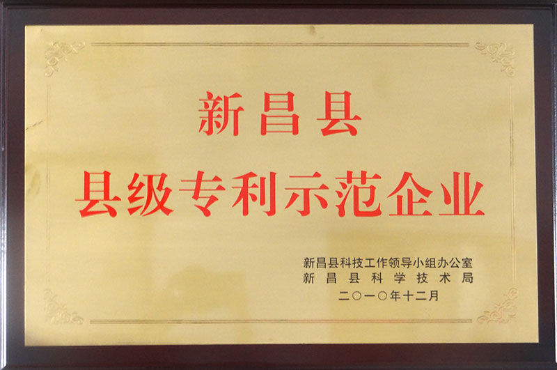 XinChang County Patent Demonstration Enterprise